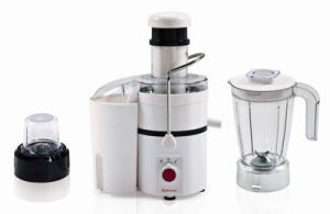 Geuwa 3 in 1 Electric 450W Food Processor pictures & photos