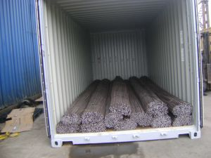 Deformed Steel Bar (GB, JIS, ASTM) pictures & photos
