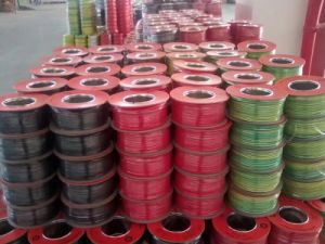 450/750V PVC Insulated Copper Wire pictures & photos