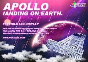 Christmas Apollo P20mm Transparent Soft LED Curtain pictures & photos