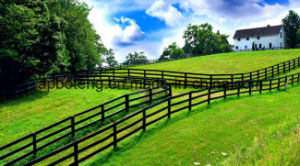 High Quality Lawn Fence /Edging Fence pictures & photos