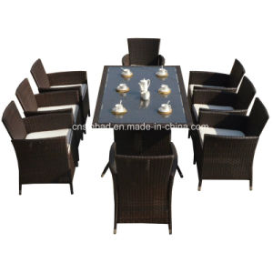 Rattan Furniture for Indoor / Outdoor with 8 Seater / SGS (4006-1) pictures & photos