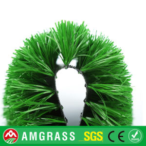 Synthetic Grass for Football, Grass Synthetic pictures & photos
