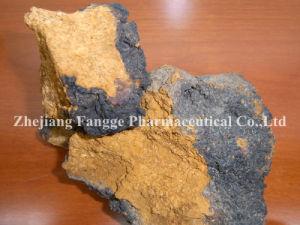 Natural High Quality Phaeoporus Obliquus Powder; Chaga Mushroom Powder; Healthcare Supplement; GMP/HACCP Certificate