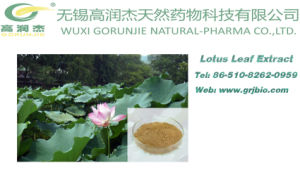 Weight Loss Lotus Leaf Extract Nuciferine pictures & photos