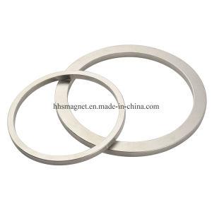 Permanent NdFeB Neodymium Iron Boron Ring Magnet for Loudspeaker pictures & photos