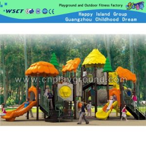 Colorful Plastic Amusement Park Outdoor Playground Equipment (HC-6201) pictures & photos