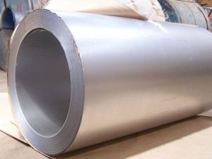 Prepainted Galvanized Aluminum Steel Coil (PPGL) pictures & photos