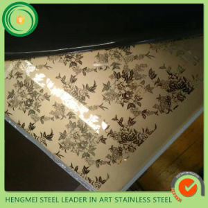 304 Titanium Coated Textured Stainless Steel Sheet for Project Constrution pictures & photos