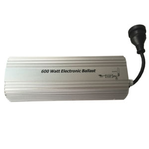 600W Digital Electronic Ballast pictures & photos