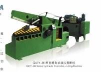 Q43-63 Hydraulic Crocodile Scrap Metal Cutting Shear Machine pictures & photos