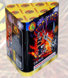 15s Top Fire Celebration Fireworks Protecnica pictures & photos