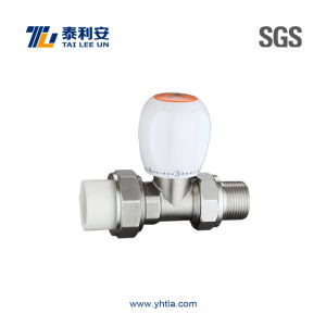 "G 3/4"" Bsp Thermostatic Radiator Valve (T1078) pictures & photos"