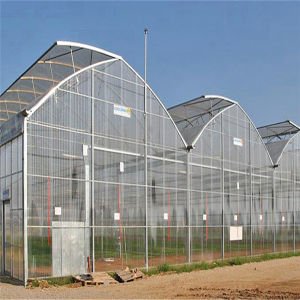 Greenhouses for Agriculture Used/Shading Net/Green Sun Shade Net pictures & photos