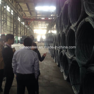 Steel Wire Rod SAE1008cr in Machining a Mechanical Part pictures & photos