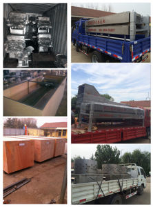 Poultry Slaughter Machines for All Customers pictures & photos