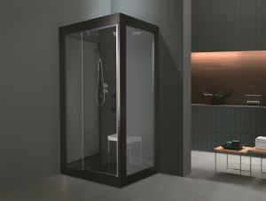 Home Portable Style Steam Room (M-8284) pictures & photos