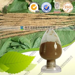 Burdock Root Extract pictures & photos