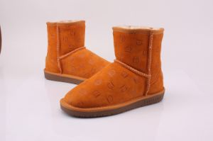 Lady Winter Warm Shoes/Boots (FB-80527) pictures & photos