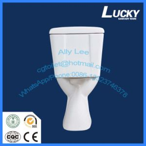 Economic Water Closet Wash Down S-Strap Two Piece Ceramic Toilet pictures & photos