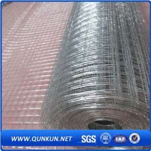 2X2 Galvanized Welded Wire Mesh Panel for Sale pictures & photos