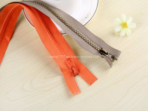 No. 5 Plastic Zipper O/E, a/L (GY-2003) pictures & photos