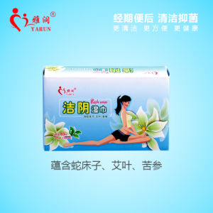 22 PCS Chinese Natural Herbal Anti Bacteria Wet Wipes pictures & photos