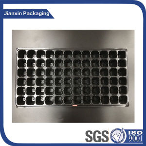 Black Plastic Fruit Compartment Tray Packaging pictures & photos