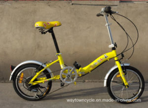 Folding Bike (WT-16410) pictures & photos