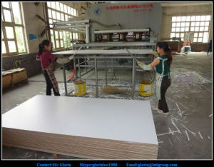 Textured White PVC Coated MDF Board for RV Market pictures & photos