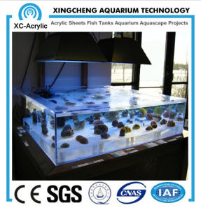 High Quality Organic Glass Fish Tank pictures & photos