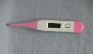 Hot Medical Equipment Waterproof Model (SW-DT03) pictures & photos