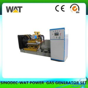 150kw Deutz Series of Biomass Gas Generator Set pictures & photos