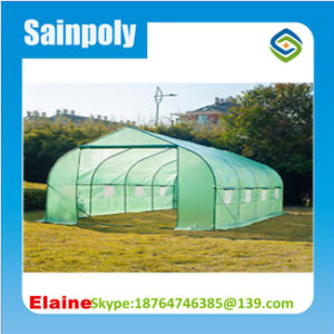 Agriculture Plastic Film for Greenhouse pictures & photos