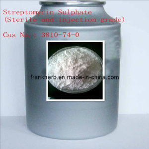 99% Streptomycin Sulphate (Sterile) 3810-74-0 (FH-M--036) pictures & photos