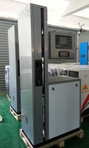 Rt-E Bluesky Fuel Dispenser with TV 2 4 6 8 Nozzle pictures & photos