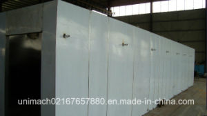 Hot Air Circulation Tunnel Drying Oven (SDG) pictures & photos