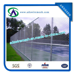 Wire Mesh Fencing (chain link fence) pictures & photos
