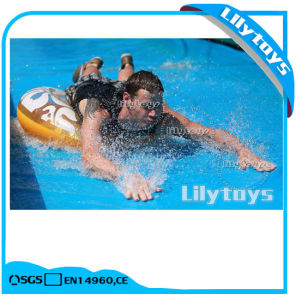 Lilytoys High Quality Long Water Slide 1000FT Inflatable City Slide for Sale pictures & photos