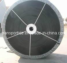 China Produce Transport Conveyor Belts (EP80~EP630) pictures & photos