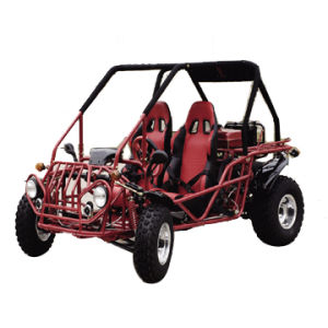 250cc EEC Go Kart (TS-250GKB-2)