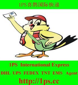 33.79RMB/Kg. International Express by UPS/TNT/FedEx/DHL/1PS