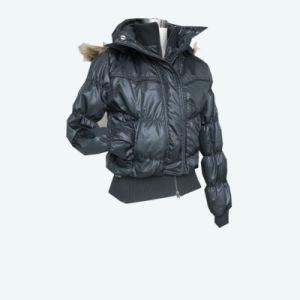 Lady′s Padded Jacket (SHL-PJ002)