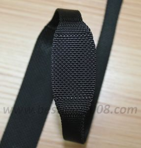 High Quality Variable Webbing for Bag and Garment #1401-105 pictures & photos