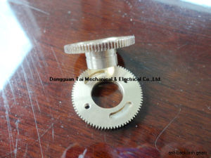 Anti-Backlash Worm Gear, Brass Ring Gear, Worm pictures & photos