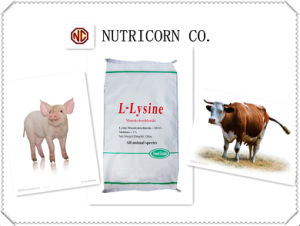 Nutricorn 98.5% L-Lysine Feed Additive with High Quality pictures & photos