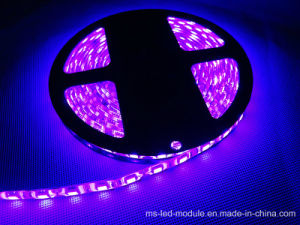 Decorative Colorful 5054 IP65 Waterproof S Style Flexible LED Strip pictures & photos