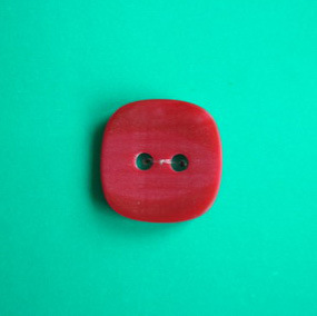 2 Holes New Design Polyester Button (S-070) pictures & photos