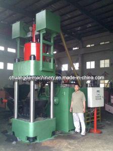 Briquetting Press (SBJ6300) pictures & photos