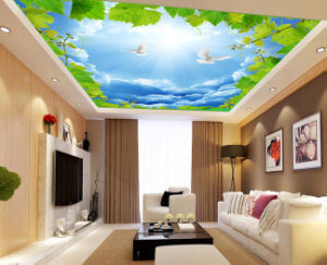 Wholesale PVC Stretch Ceiling Film for Living Room Decoration pictures & photos